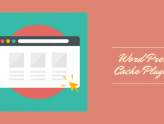 WordPress Cache Plugins